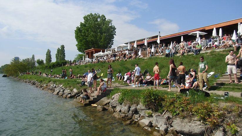 Sommer auf der Donauinsel
