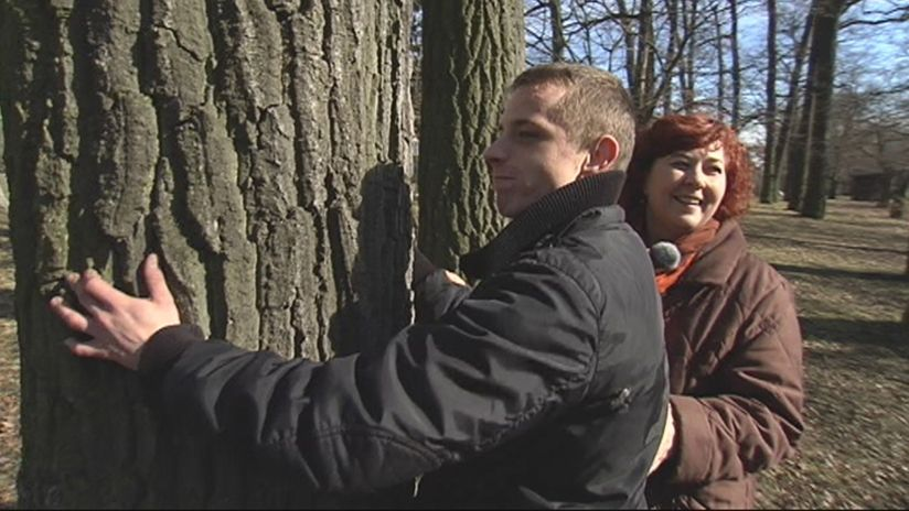 OHH, mein Baum!