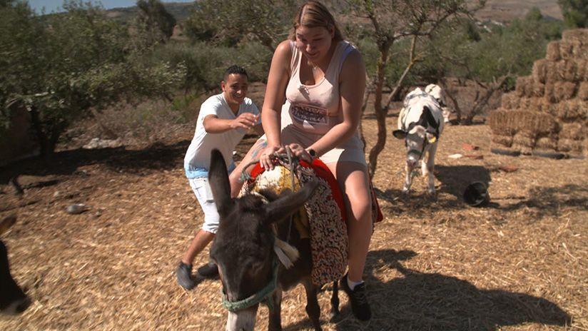 Ritt auf dem Esel