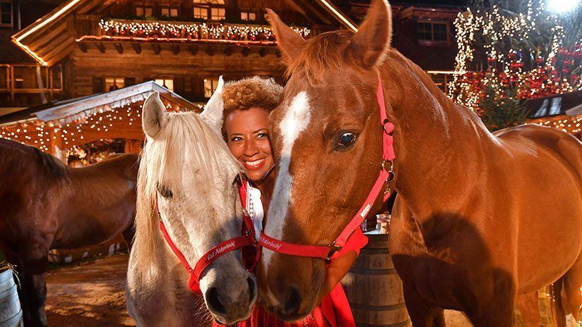 Kuscheln mit Pferden