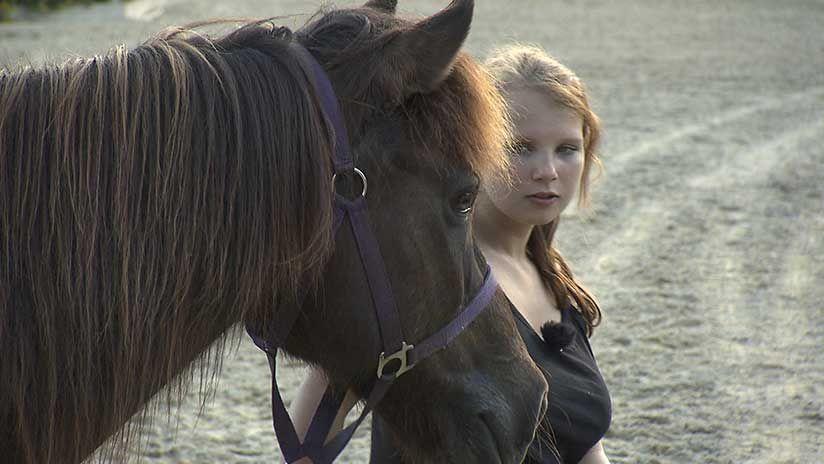 Die Pferdenärrin