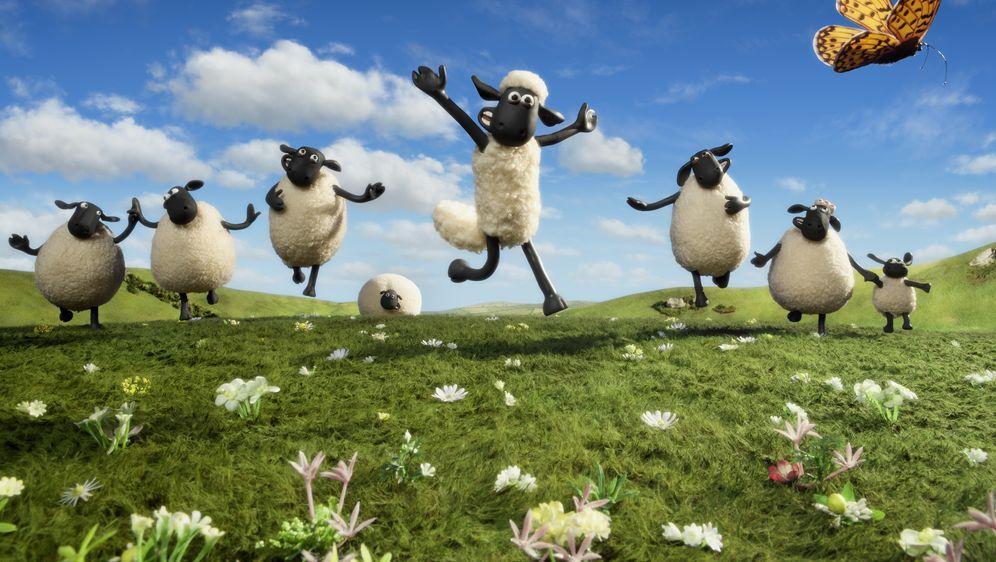 Shaun das Schaf - Der Film - Bildquelle: Foo